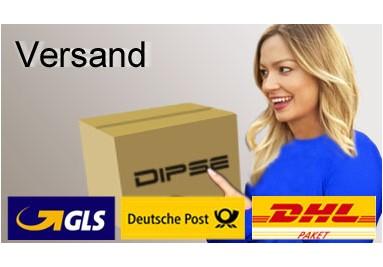 Versandarten im DIPSE Digitalwaagen Shop.